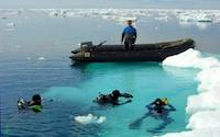 Divers surfacing near iceberg in Antarctica