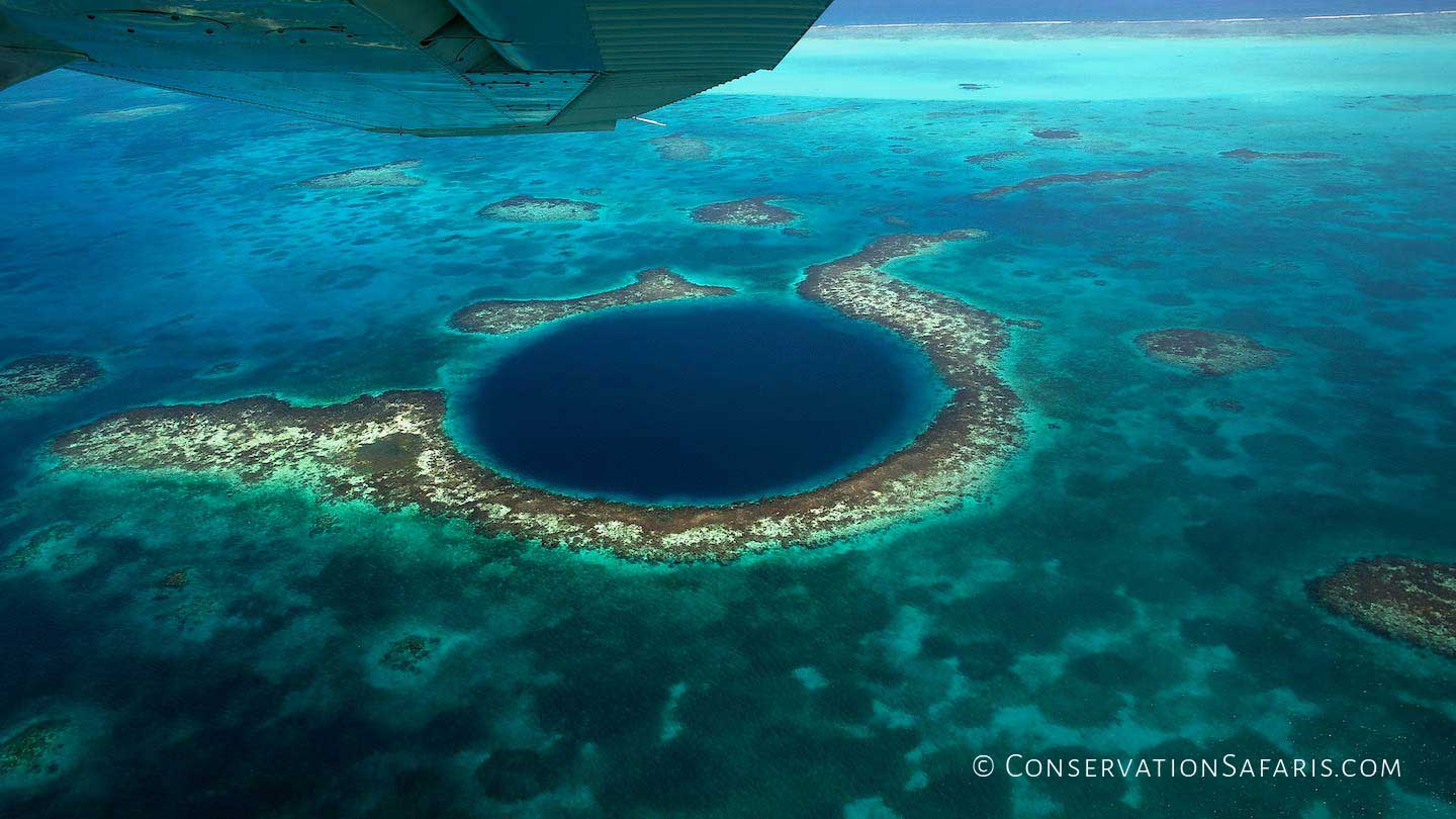 Belize Diving in the Blue Hole